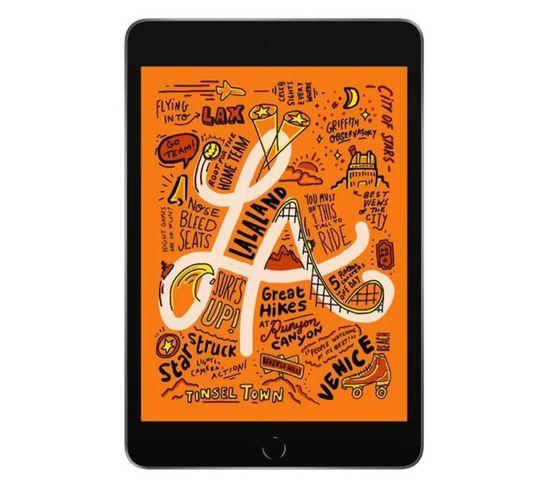 Tablette Tactile iPad Mini (2019 - 5e Génération) 64 Go - Wifi - Gris