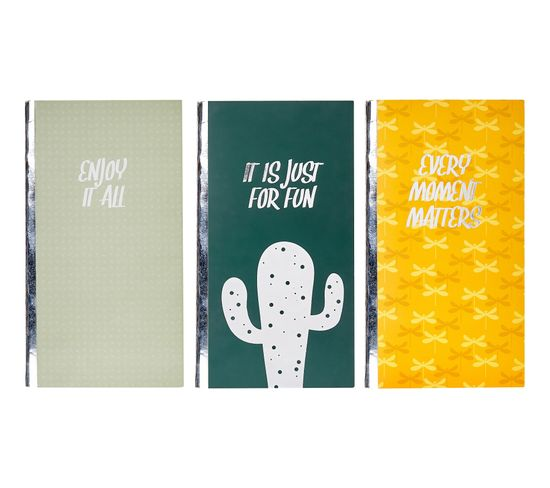 Set de 3 notebook 11x21 cm CACTUL 3 coloris