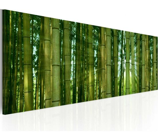 Tableau Bamboo In The Sunshine - 120 X 40 Cm