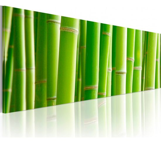 Tableau Panoramique In A Bamboo Bush - 120 X 40 Cm
