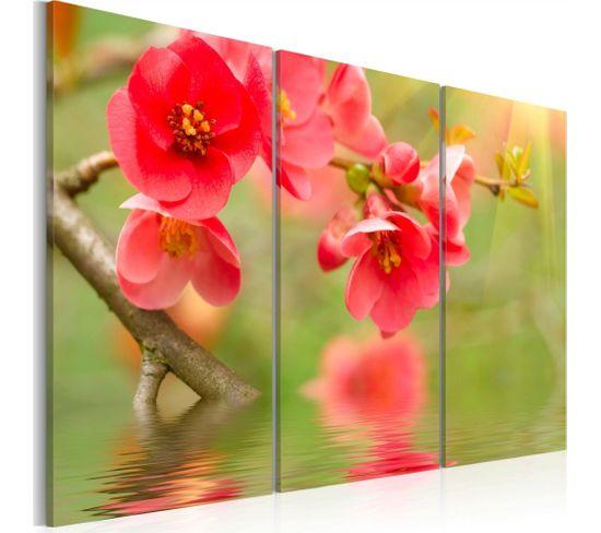 Tableau Cerisier Sur L'eau 60 X 40 Cm