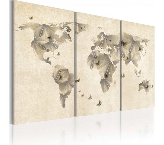 Tableau Atlas Des Papillons 120 X 80 Cm
