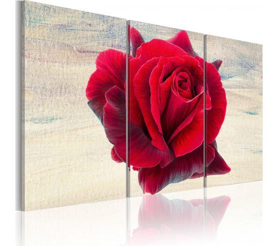 Tableau Lyrical Rose 60 X 40 Cm