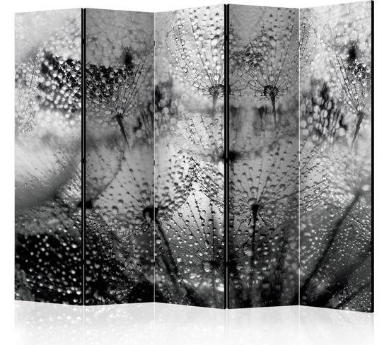 Paravent 5 Volets Kiss Of The Rain Ii