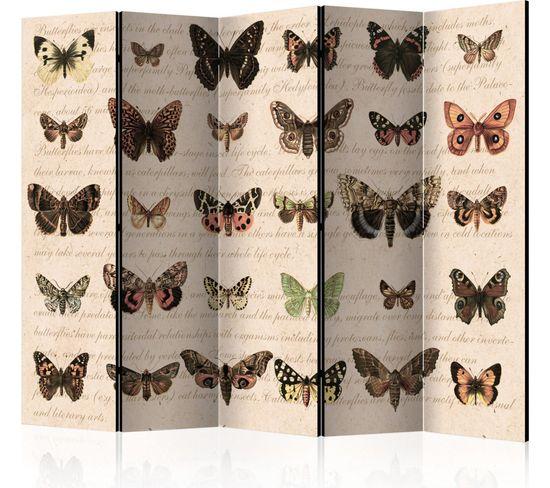 Paravent 5 Volets Retro Style: Butterflies Ii
