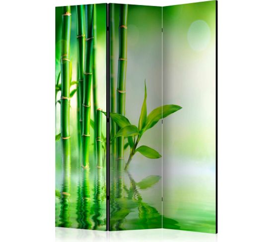 Paravent 3 Volets Green Bamboo